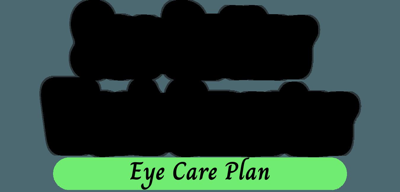 see better work smarter eye care plan
